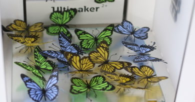 Schmetterlingswettbewerb