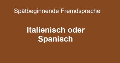 Wahl der spätbeginnenden Fremdsprache